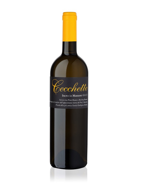 Vino - CECCHETTO CARMENERE MARCATREVIGIANA IGT '19 075
